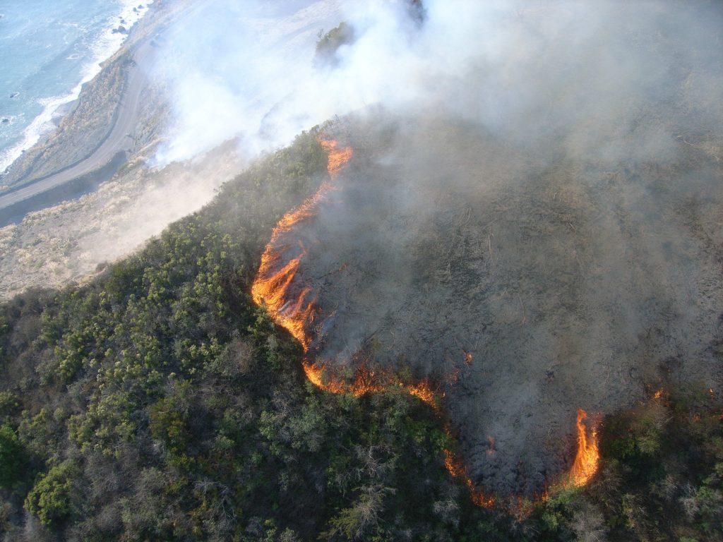 2008 Chalk Fire