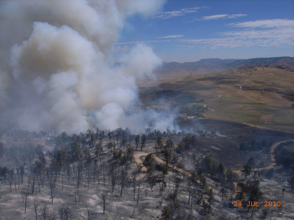 2010 West Fire